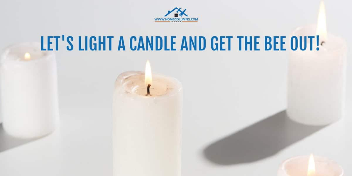 how to get a bee out of your house using citronella candles